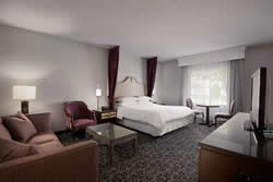 Standard King Hotel Room at the Anaheim Majestic Garden Hotel
